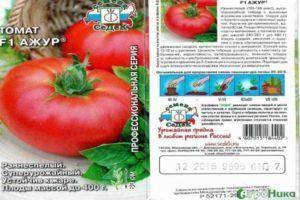 Помидоры гибрида «мишель f1»: отзывы, описание, характеристика, урожайность, фото и видео