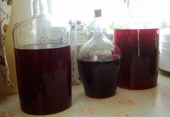 Лучшие сорта винограда для изготовления вина