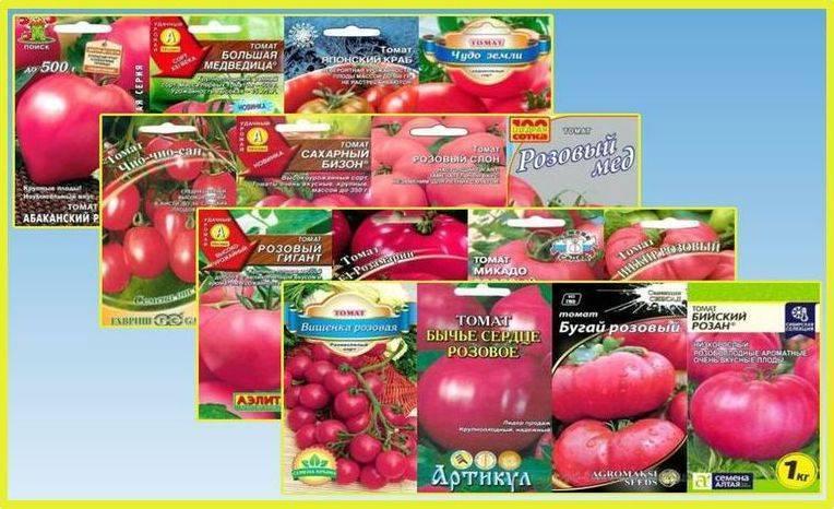 Малиновые плоды с отменным вкусом: томат розовое чудо