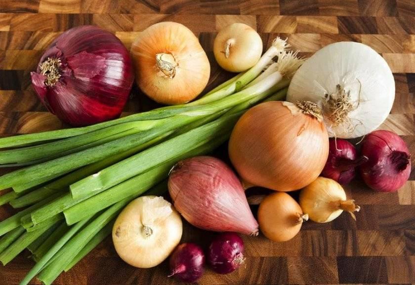 Заготовка лука: оригинальные рецепты на зиму