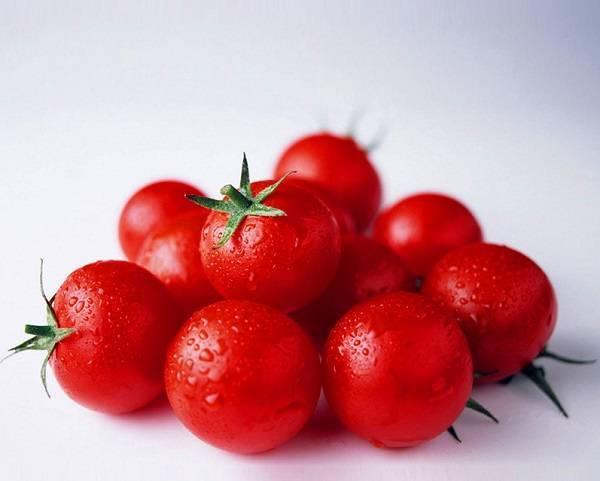 Сорт томатов сибирской селекции, дающий отличный урожай в теплице — «жемчужина сибири»