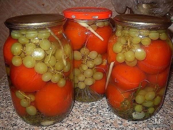 Помидоры с виноградом на зиму – оригинальный рецепт пикантной закуски. как приготовить помидоры с виноградом на зиму