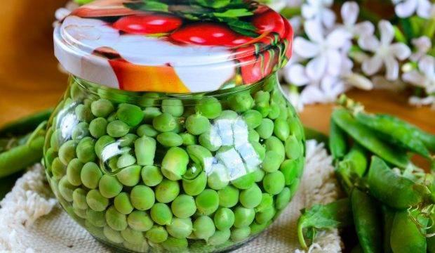 Хрустящие солёные огурцы на зиму в банках — 10 вкусных рецептов в домашних условиях