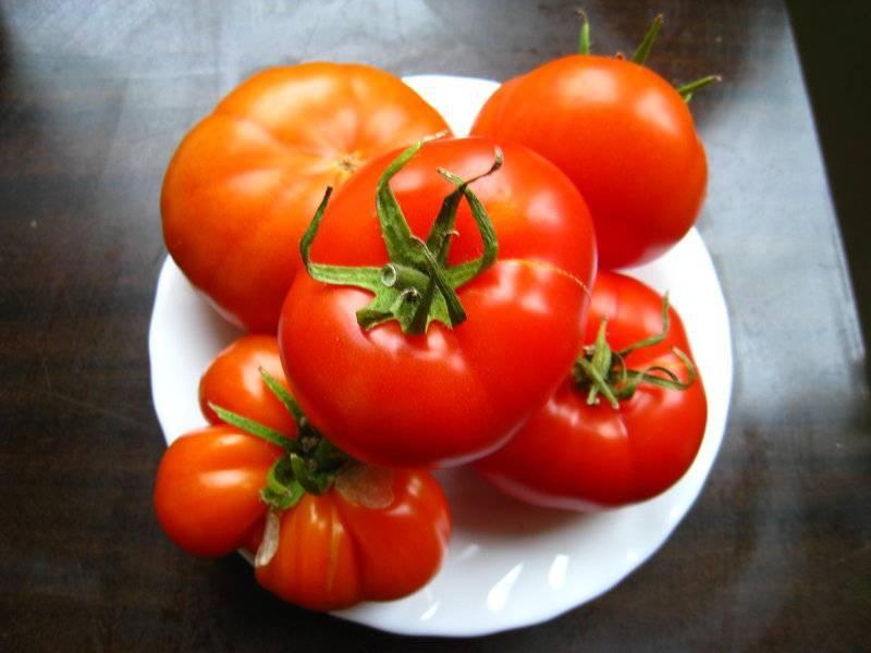 Выбираем сорта сладкого перца: черри, болгарский, доминатор и другие