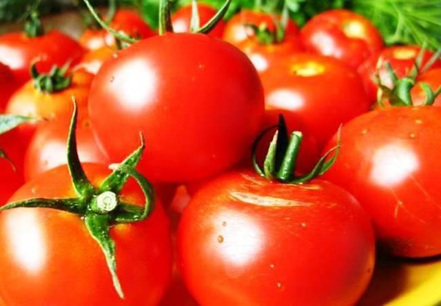 Для выращивания на севере подойдет томат «суперприз f1»: описание и урожайность сорта