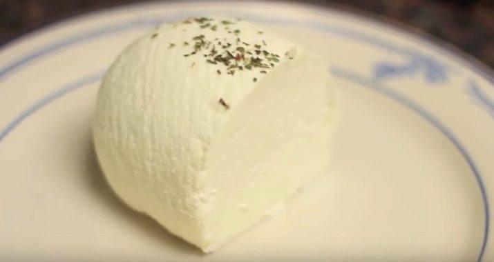 Что лечит козье молоко: польза пожилым людям и не только | полезность козьего молока для здоровья (рецепты)